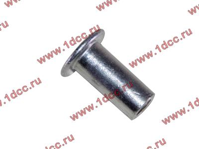 Заклепка алюминиевая 10х24 H2/H3 HOWO (ХОВО) 189000340068 AL фото 1 Иркутск