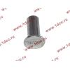 Заклепка алюминиевая 10х24 H2/H3 HOWO (ХОВО) 189000340068 AL фото 2 Иркутск