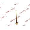 Болт центральный рессоры задней без бобышки H2/H3/SH HOWO (ХОВО) WG9638520018+013 фото 3 Иркутск