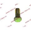 Болт пустотелый М10х1,0 (штуцер топливный) H HOWO (ХОВО) 81500070054 фото 3 Иркутск